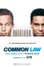 Common Law: Season 1