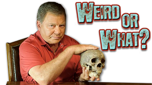 Weird Or What?: Season 3