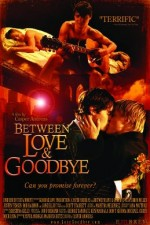 Between Love & Goodbye