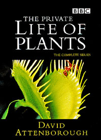 The Private Life Of Plants: Season 1