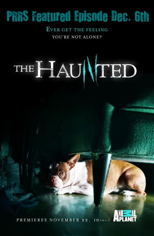 The Haunted: Season 1