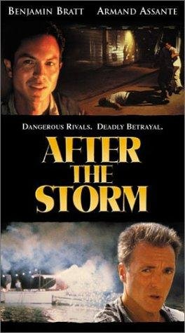 After The Storm 2001