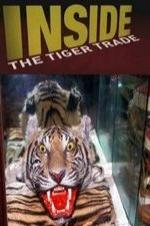 Inside: The Tiger Trade