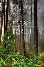 National Geographic Kingdom Of The Forest